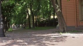Il vicolo verde di un parco nel giorno soleggiato dell'estate, gruppo di persone si avvi ciclare stock footage