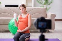 Il video della registrazione della donna incinta per il blog e il vlog Fotografia Stock Libera da Diritti