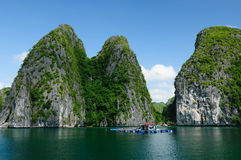 Il Vietnam - baia di Halong Fotografie Stock Libere da Diritti