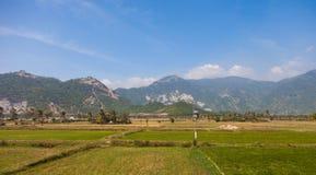 Il Vietnam, paesaggio dal treno Immagine Stock