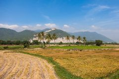 Il Vietnam, paesaggio stupefacente della campagna Fotografie Stock Libere da Diritti