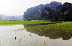 Il Vietnam Tam Coc fotografie stock libere da diritti