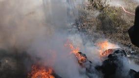 Il vigile del fuoco estingue il fuoco con un getto di acqua video d archivio
