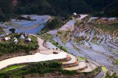 Il villaggio alloggia vicino ai campi dei terrazzi del riso Banaue, Filippine Immagini Stock Libere da Diritti