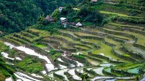 Il villaggio alloggia vicino ai campi dei terrazzi del riso Banaue, Filippine Fotografia Stock