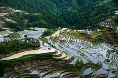 Il villaggio alloggia vicino ai campi dei terrazzi del riso Textu astratto stupefacente Fotografia Stock
