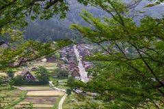 Il villaggio con le case tradizionali dell'azienda agricola, Shirakawa va, il Giappone Fotografia Stock Libera da Diritti