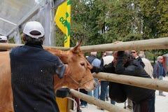 Il villaggio degli agricoltori Coldiretti Immagine Stock Libera da Diritti