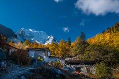 Il villaggio del tibetano e del tempio nella riserva naturale di Yading immagine stock libera da diritti