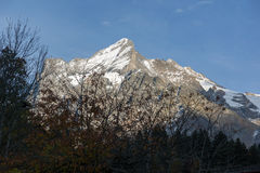 Il villaggio di Grindelwald e le alpi di Wetterhornin del supporto si avvicinano alla città di Interlaken Immagini Stock Libere da Diritti
