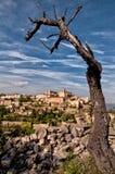 Il villaggio Gordes della Provenza trascura con l'albero asciutto fotografie stock libere da diritti