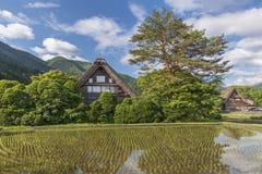 Il villaggio storico Shirakawa-va, il Giappone Fotografia Stock