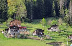 Il villaggio tradizionale alloggia il savsat di Artvin Immagine Stock