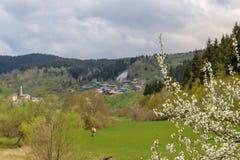 Il villaggio tradizionale alloggia il savsat di Artvin Fotografia Stock
