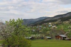 Il villaggio tradizionale alloggia il savsat di Artvin Fotografie Stock