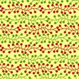 Il vischio di Natale allinea il modello senza cuciture Immagini Stock Libere da Diritti