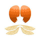 Il volo animale di libertà dell'uccello del pignone della piuma delle ali e la pace naturale di vita del falco progettano l'aquil Fotografia Stock