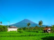 Il vulcano di Agung è il più alta montagna sull'isola di Bali, Indonesia Immagini Stock