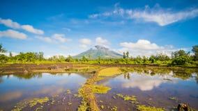 Il vulcano di Mayon è uno stratovolcano attivo nella provincia dell'Albay nella regione di Bicol, sull'isola di Luzon in stock footage