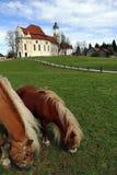 Il Wieskirche famoso in Steingaden in Baviera Germania Fotografia Stock Libera da Diritti