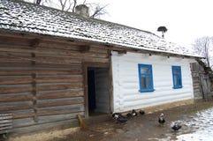 Il y a des canards près de la maison en bois photographie stock
