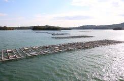 Il y a le paysage d'île de baie et l'aqua de perle cultivant la culture Shima Japan photo libre de droits