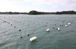 Il y a le paysage d'île de baie et l'aqua de perle cultivant la culture Shima Japan image stock