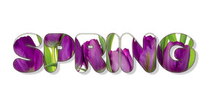 Il y a texte de fleurs au printemps Images libres de droits