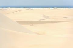Il Yemen. Isola di socotra. Dune di sabbia Immagini Stock