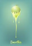 Il yogurt ed il frullato del melone del cantalupo mungono con frutta, il concetto del succo, illustrazione di vettore Fotografia Stock