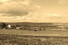 Il Yorkshire attracca Fotografia Stock