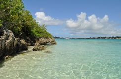 Ile aux aigrettes, Indian Ocean Island. It is an island Indian Ocean island with multitudes birds, funds are transparent and convenient to the snorkeling Royalty Free Stock Photography