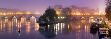 Ile DE La Cite bij dageraad met mist, de Zegenrivier, en de brug van Pont Neuf Parijs, Frankrijk stock foto