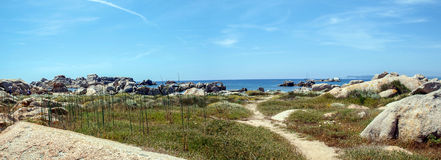 Ile Lavezzi panorama Royalty Free Stock Images