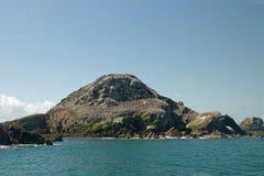 Ile Rouzic, Kolonie des Züchtens von Nordbasstölpeln in Bretagne stockfotografie