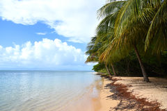 Ilet-Winkelzeichen in Guadeloupe stockfoto