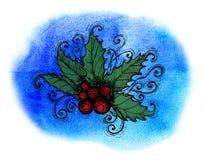 Ilex with berries Stock Photo