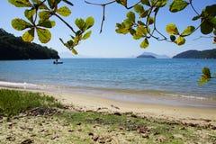 Ilha большая Бразилия Стоковая Фотография RF