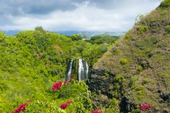 A ilha cai no kawaii Estados Unidos de Havaí da selva imagens de stock royalty free