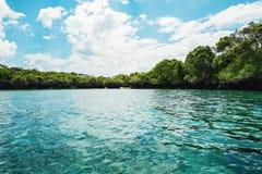 Ilha com hortaliças no oceano em Zanzibar fotos de stock