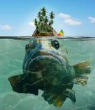 Ilha com um peixe grande do monstro de mar abaixo fotos de stock royalty free