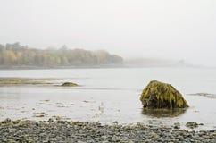 Ilha da barra no porto da barra, Maine imagens de stock