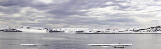 Ilha da decepção do panorama, a Antártica Imagens de Stock