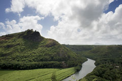 Ilha da selva Foto de Stock Royalty Free