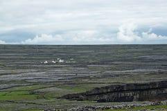 Ilha de Aran Imagem de Stock
