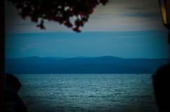 Ilha de Brac, árvores e folhas, Makarska riviera, Dalmácia, croata fotografia de stock royalty free