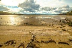 Ilha de Bruny no por do sol fotos de stock