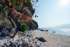 Ilha de Capones imagens de stock royalty free