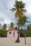 Ilha de Catalina - praia tropical das caraíbas e pouca casa Fotografia de Stock Royalty Free