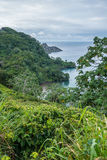 Ilha de Cocos da baía de Catham imagens de stock